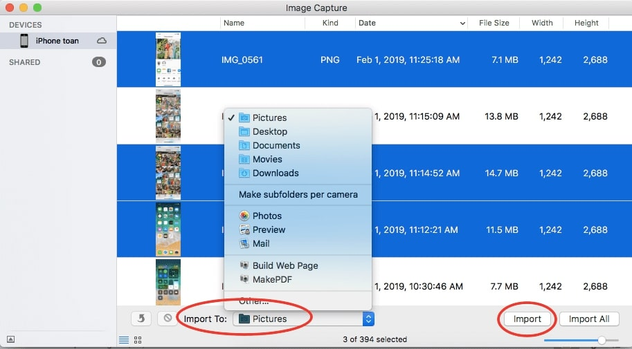 copy picture from iphone to mac