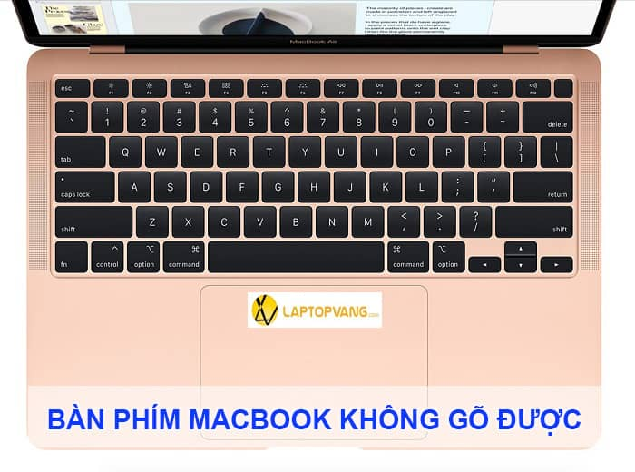bàn phím macbook không gõ được